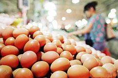 2001年-2017年鸡蛋价格基本走势与规律 期货农产品投资必读
