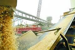 【农业期市数据】 USDA报告指出周度出口净销售大豆低于预期