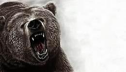 """随着投资者押注油价上涨 油价跌成""""饥饿""""熊的猎物"""