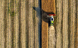 澳大利亚最大的粮食出口商试验区块链跟踪系统