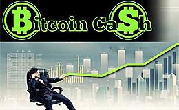 比特币现金BCC正在获得越来越多的支持