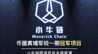 启程下一站!  小牛链Maverick Chain全国路演即将开始