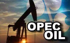 OPEC技术委员会建议延长减产协议六个月