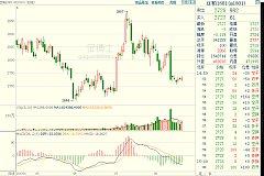 钟志坚:豆粕价格跌跌不休,棕榈油多空交织涨幅受限