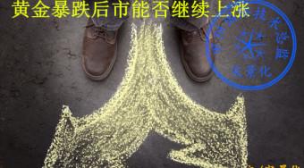 宋景化:9.21黄金暴跌还会上涨吗如何操作,黄金白银多单被套怎么解套