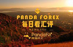 熊猫外汇交易策略:美联储新主席或出黑马,美指大振黄金承压