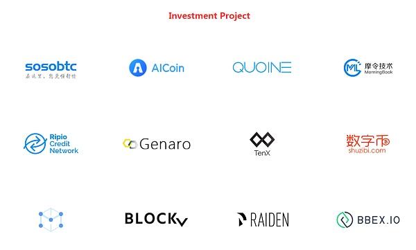 连接资本的投资项目