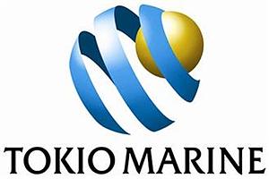 日本保险公司