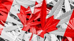 美国信用机构参与加拿大区块链身份网络测试