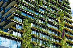 区块链进军环境可持续发展行业