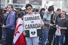 IBM敦促英属哥伦比亚利用区块链技术追踪合法大麻的销售途径