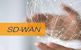区块链技术与SD-WAN相结合 助推区块链灵活性和适应性的增长