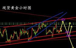 尤舒昆:众议院税改突围成功,11.17现货黄金操作建议
