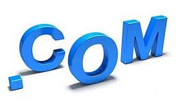 1月16日域名交易日报:域名changsu.com被终端拿下;