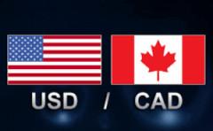 """加拿大央行行长带多头乘坐""""过山车"""" 美元兑加元汇率先降后升"""