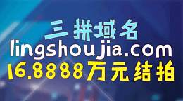 地瓜55元注册的手工米yongyouyun.com被用友集团六位数收购!