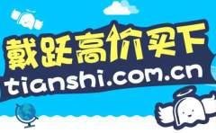 戴跃高价买下tianshi.com.cn!卖家是域名大佬龚根源!