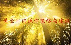 赵毓盛:1.9现货黄金(伦敦金)创利丰/鼎展万豪/长江金业操作解套