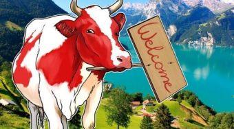 瑞士政府成立区块链特别工作组 首次全体会议于本周五召开