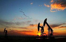 舒灵馨:1.16现货原油、外汇/美原油、中远黑角欧盘操作建议