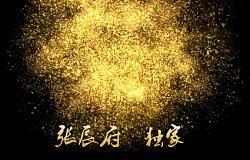 张辰府:1.17黄金精品分析,春节1357必到
