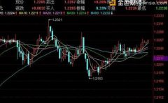 陈煦:欧兑美1月19日最新行情技术分析