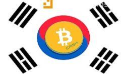 韩国政府发布官方声明没有数字货币交易禁令,俄罗斯表示将加密货币合法化