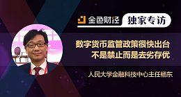 人民大学金融科技中心主任杨东:数字货币监管政策很快出台 不是禁止而是去劣存优 | 独家专访
