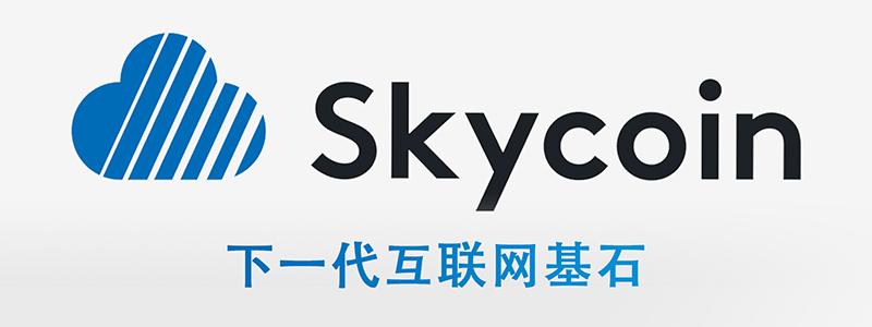 Skycoin:下一代互联网基石