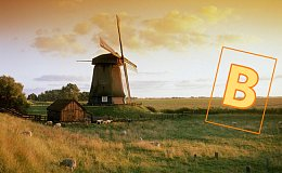 荷兰选举委员会拒绝了海盗党比特币支付 海盗党称会继续使用比特币