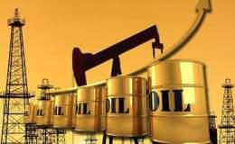 随着美国燃料谷物市场的沮丧 原油扩张萧条