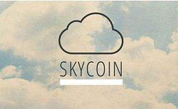 Skycoin是什么 | 金色百科