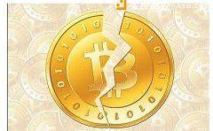 分叉币将何去何从?新比特币NBTC为何受到热捧?