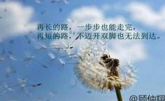 顾仲翔:2.20美指弱势反弹拨云见日,黄金双顶高压震荡下行!