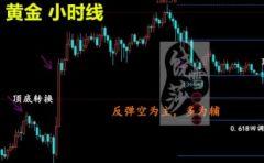 饶雪莎:2.20黄金原油操作建议,美联储会议纪要顺势空?