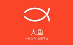 """魅族关闭""""大鱼""""APP    双拼域名dayu.com又将归于何处"""