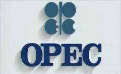 OPEC乐观看待产油国减产协议执行 油价上涨七周最高位