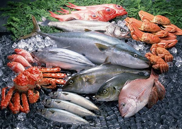 区块链技术提高渔业供应链流程 来源:金色财经