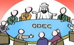 OPEC在减产监督审核会议后称 非OPEC国家已完成60%减产任务