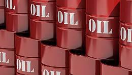 为避免油价暴涨冲击 美国联邦政府储备了近7亿桶石油