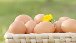 2017年3月15日全国鸡蛋价格:蛋价稳中运行 再跌的可能性有几成?