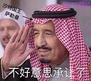 ICM Capital英国艾森:沙特国王两次废黜,终于让自己的儿子当上了王储