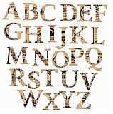 多枚三字母域名结拍 VVR.com拍出25万元