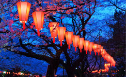 日本将于2018年开展基于区块链技术的土地登记试点