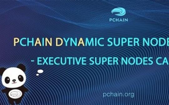 PCHAIN动态超级节点计划前传  常务超级节点竞选