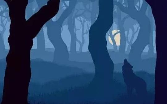 """区块链何时才能变成防""""狼""""神器?"""