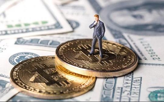 Morgan Creek Digital和加密指数提供商Bitwise推出数字资产指数基金