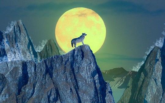 以太坊月圆之夜出现的4大狼变征兆