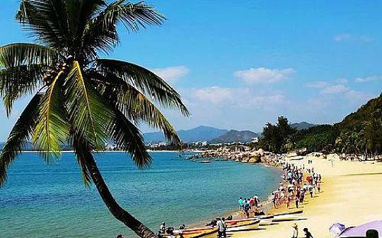 海南成立自贸港区块链试验区成区块链企业淘金地