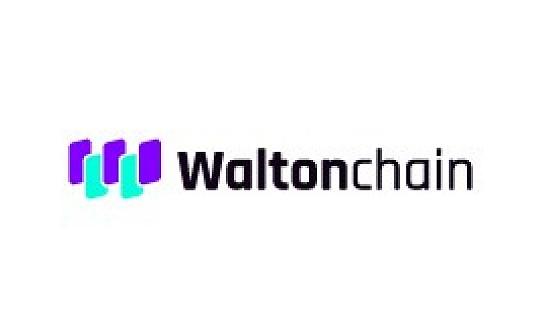 被低估的沃尔顿链